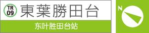 东叶胜田台站